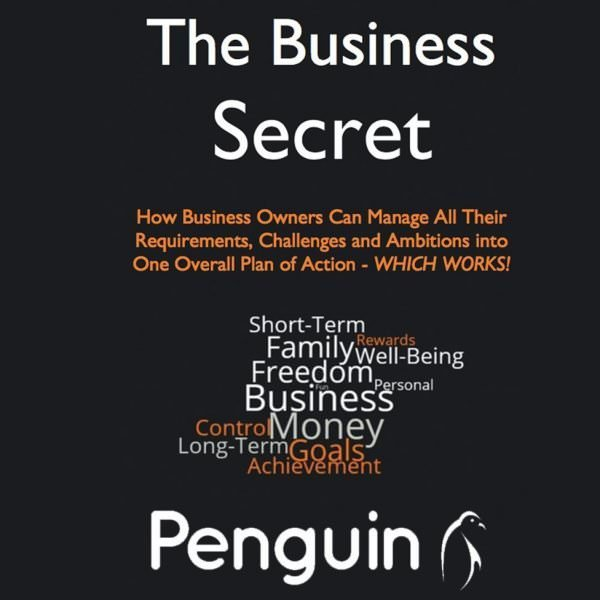The Business Secret - How business owners can manage all their requirements, challenges and ambitions into one overall plan of action - WHICH WORKS!